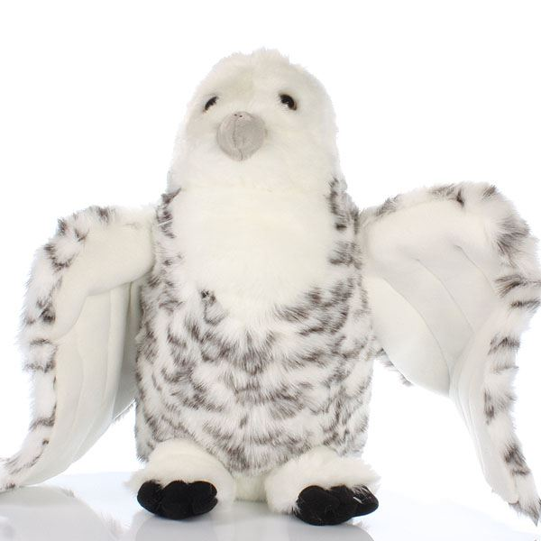 Large Snowy Owl With Open Wings