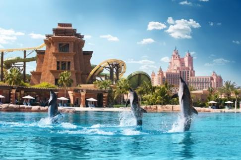 Dolphin Bay - Atlantis Dolphin Bay
