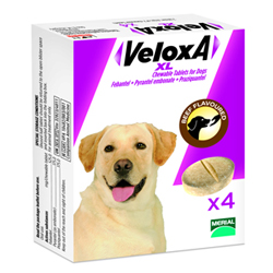 Veloxa Xl Chewable Tablets For Large Dogs Up To 35 Kg 2 Tablet