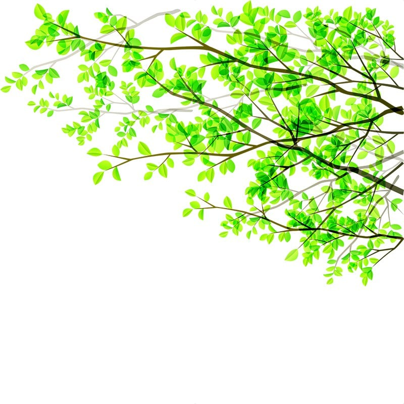 Green Branches PVC Window Film Wall Sticker Matte